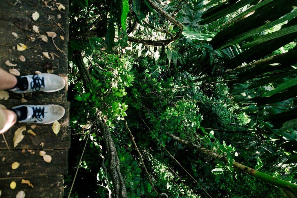 zipline in kauai hawaii